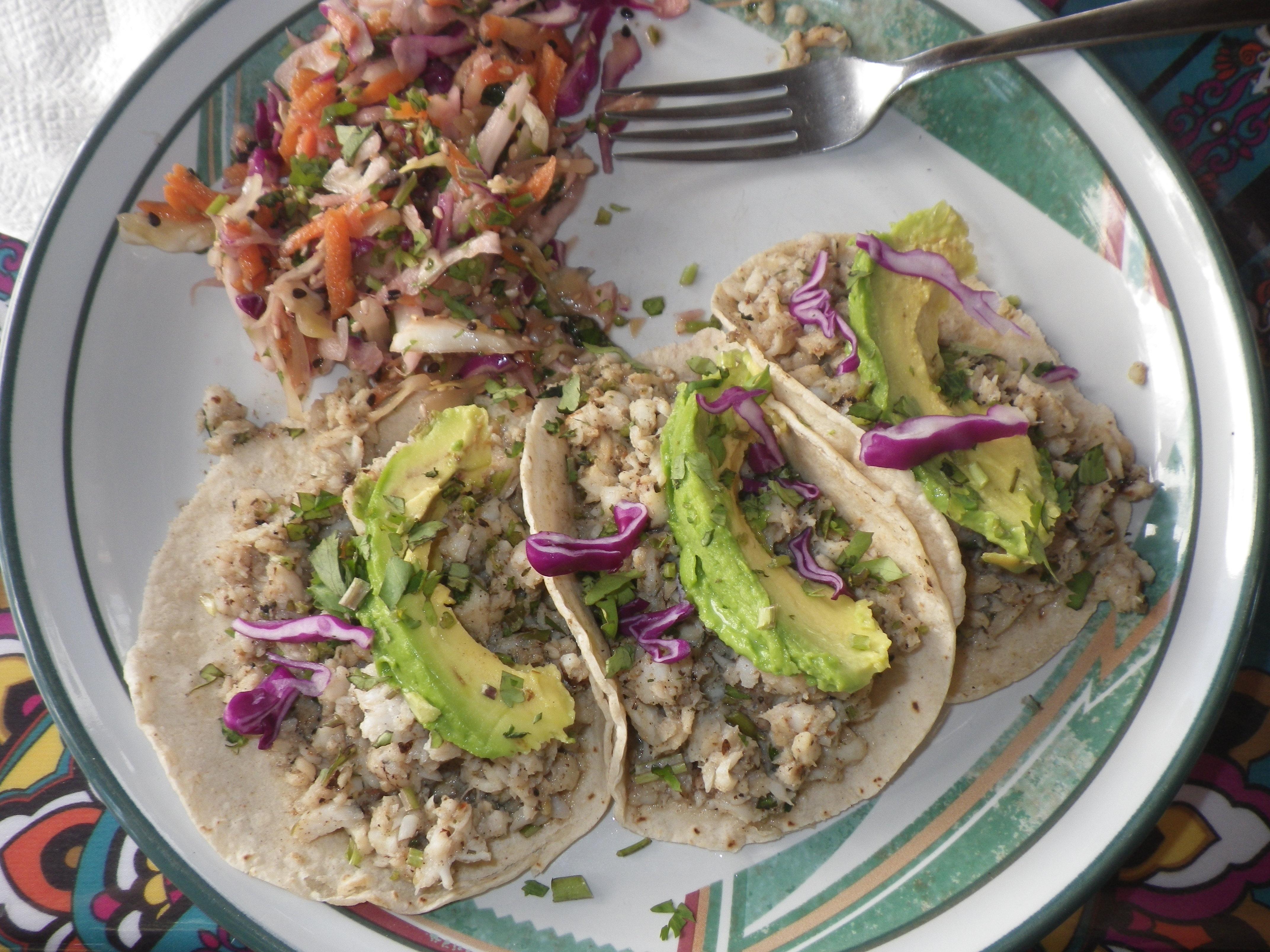 Lime Cilantro Lion Fish Tacos