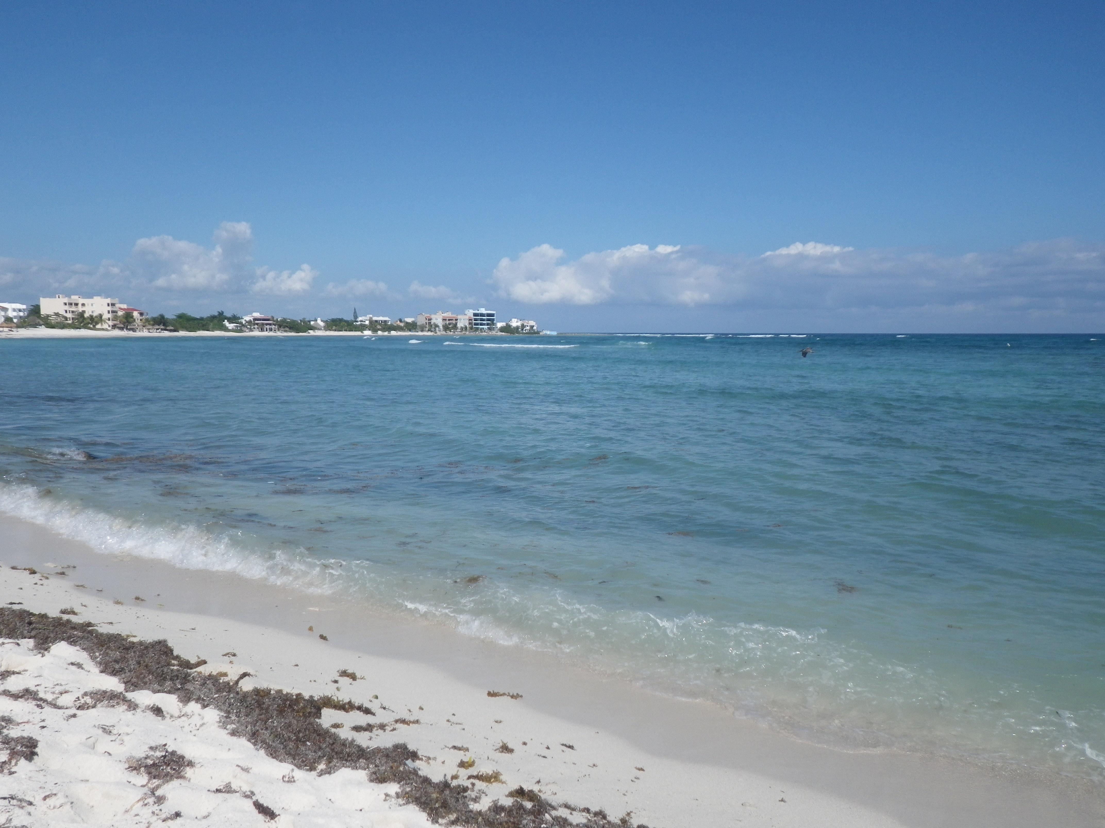 Akumal Bay, Quintana Roo